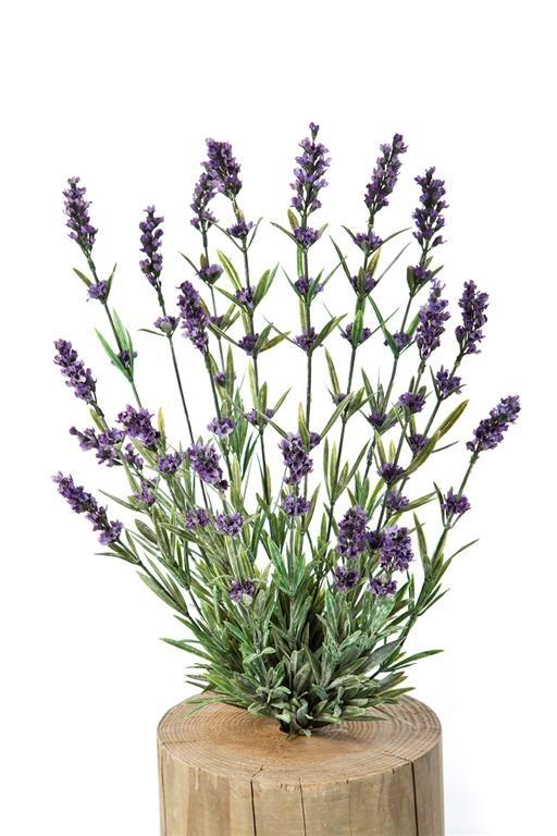 Plantes artificielles pour votre firme any green for Plante artificielle bureau