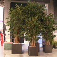 Artificial plants and trees