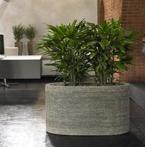bacs plantes. Black Bedroom Furniture Sets. Home Design Ideas