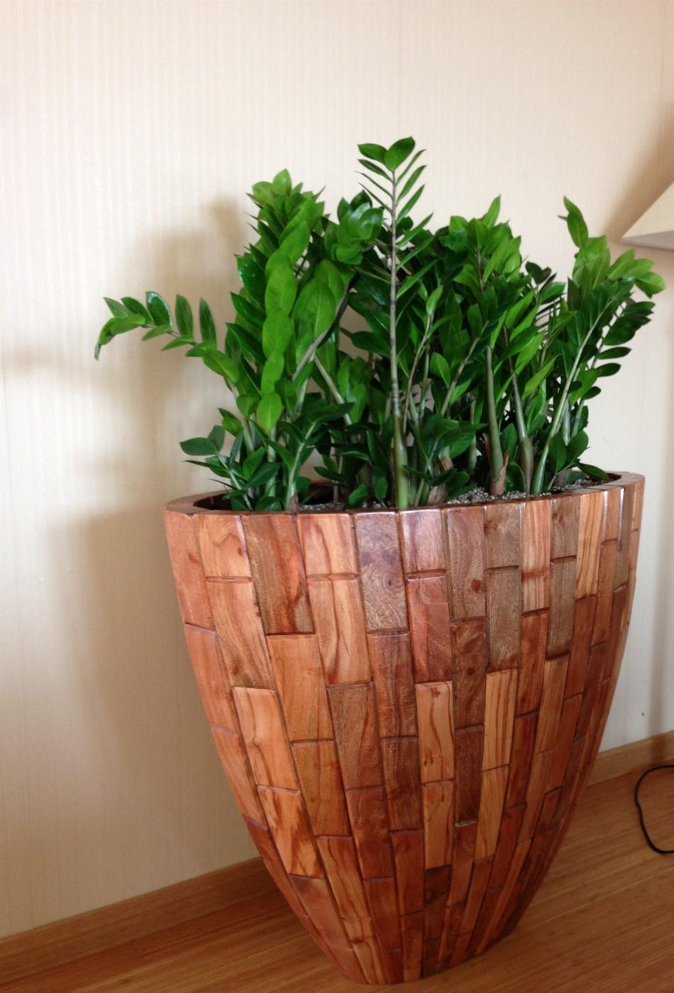 acheter ou louer des bacs plantes naturels. Black Bedroom Furniture Sets. Home Design Ideas