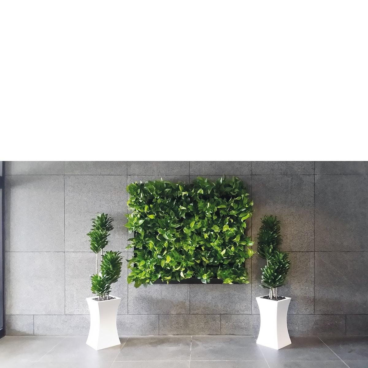 Nextgen Living Wall