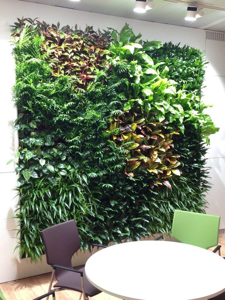 zoom  NextGen Living green walls