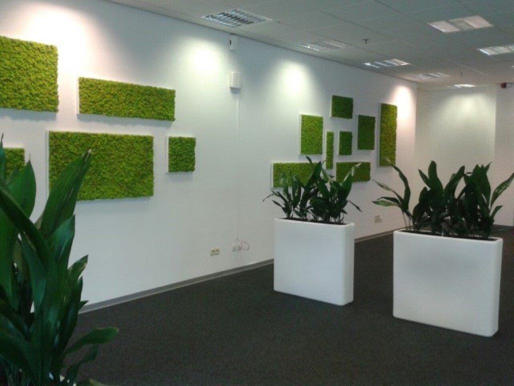 Louer ou acheter de murs v g taux stabilis s for Acheter vegetaux