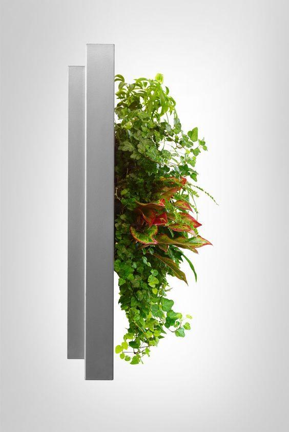 Live picture of levend schilderij met echte planten for Planten schilderij intratuin