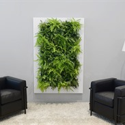 Live Picture made up of plants